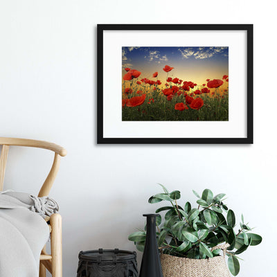 Poppies by Albena Markova Framed Print - Ustad Home