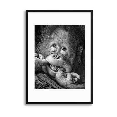 Big Smile.....Please by Angela Muliani Hartojo Framed Print - Ustad Home