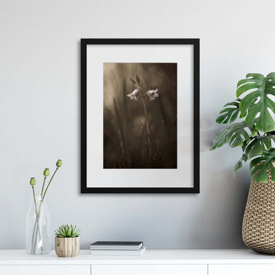 A Small Flower on the Ground by Allan Wallberg Framed Print - Ustad Home