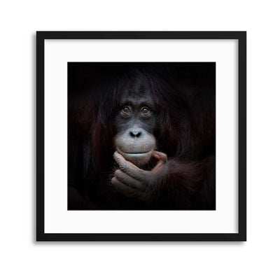 The Mirror Image by Antje Wenner-Braun Framed Print - Ustad Home