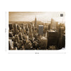 Empire State View in Sepia Wallpaper - Ustad Home
