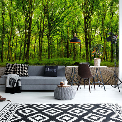 Step into the deep green Wood Wallpaper - Ustad Home