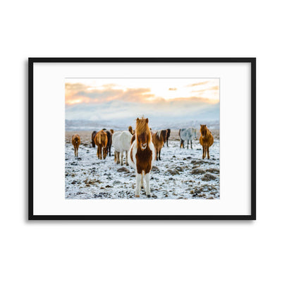 The Gang Framed Print - Ustad Home