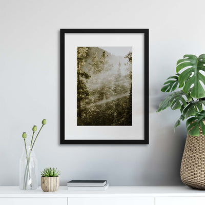 Sunbeam Forest Framed Print - Ustad Home
