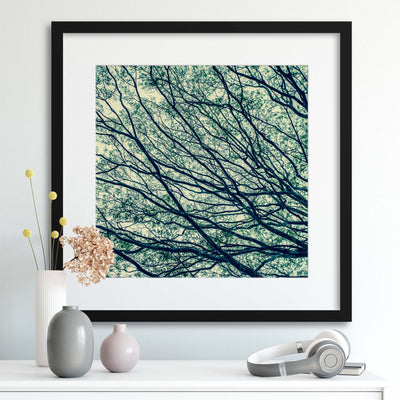 Through the Branches Framed Print - Ustad Home