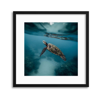 Nearly Home Framed Print - Ustad Home