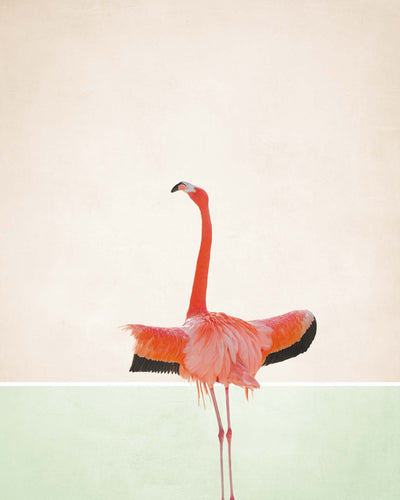 Flamingo Modern I Framed Print - Ustad Home