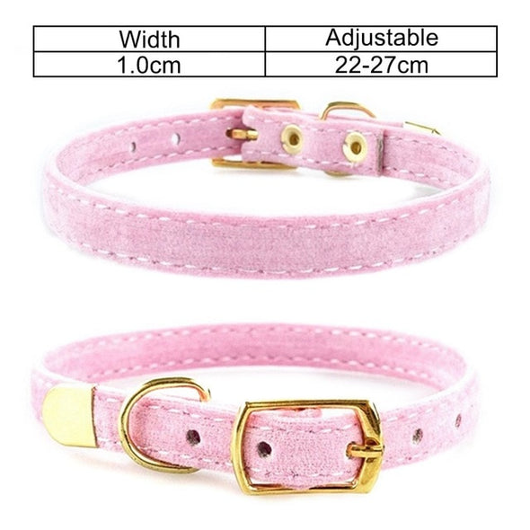 Adjustable Collar for Small Dogs Puppies - Dtesh Shop