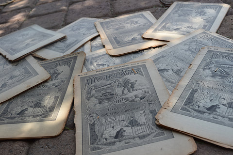 Antique Dime Novels