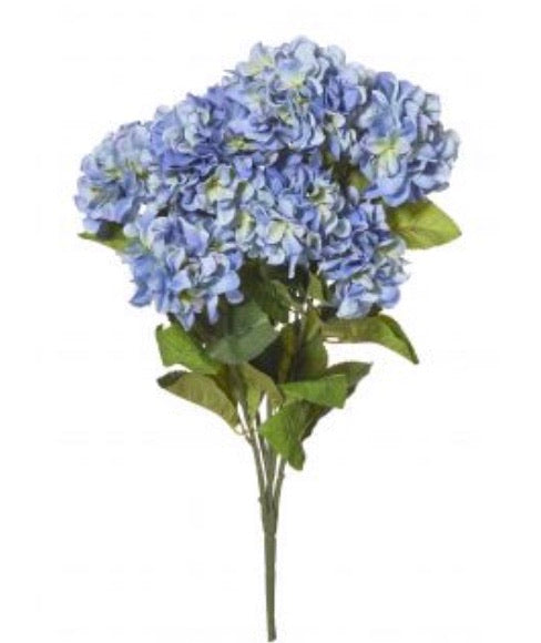 Hydrangea Bush Large Blue