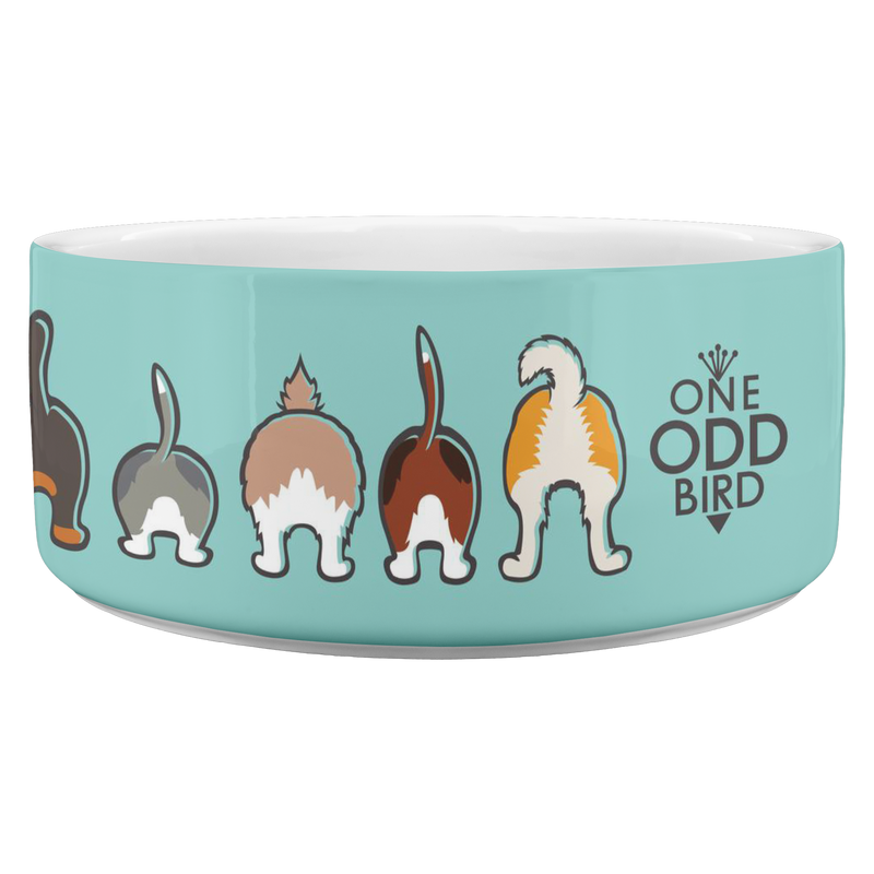Happy Tails Dog Bowl - Aqua