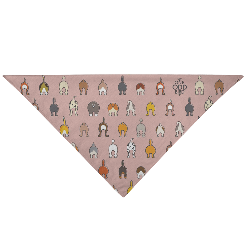 Happy Tails Dog Bandana - Blush