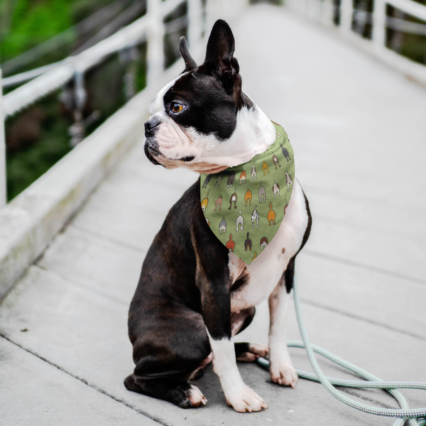 Happy Tails Dog Bandana - Green