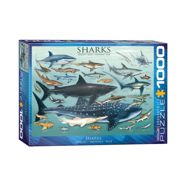 Eurographics 1000pc Sharks