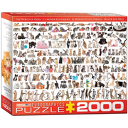 Eurographics 20580 2000pc World of Cats