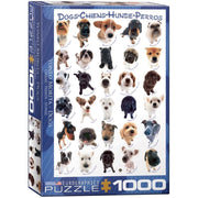 Eurographics 61510 Dog Breeds Puzzle 1000pc