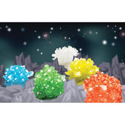 IS 70019 Crystal Growing Kit