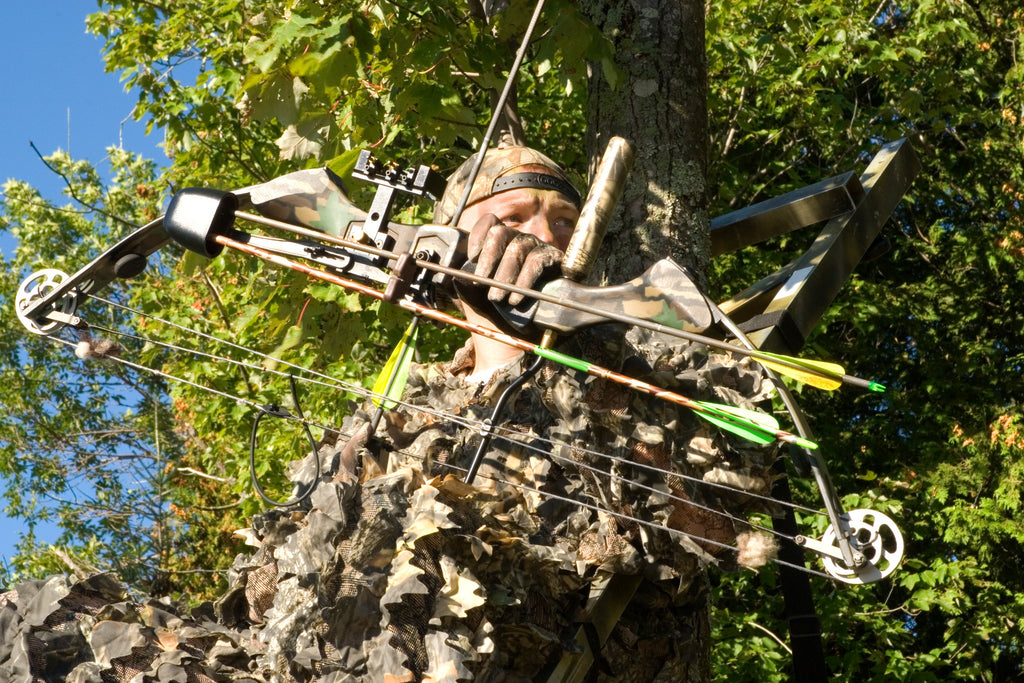 Bow Hunting Guide For Beginners