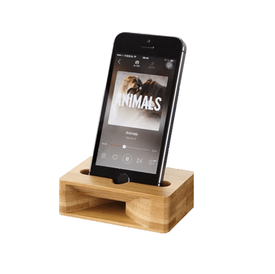 Bamboo Amplifier