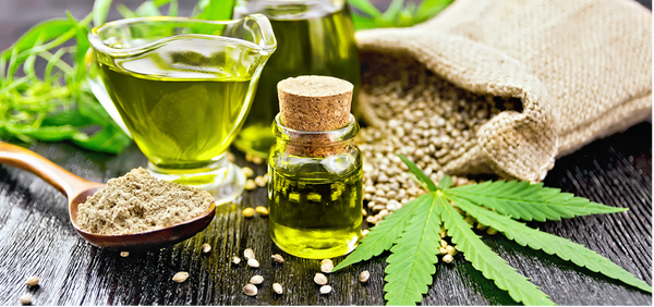 The Hype About Hemp Seed Oil Explained