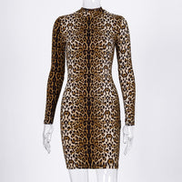 Leopard Print Long Sleeve Bodycon Dress - Fashionz Shop