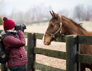 Spendthrift Farm Tour FAQs
