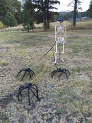 Best 2019 Halloween Decorations