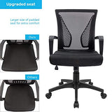 Ergonomic Mesh Mid back Lumbar Support Task Chair, Black