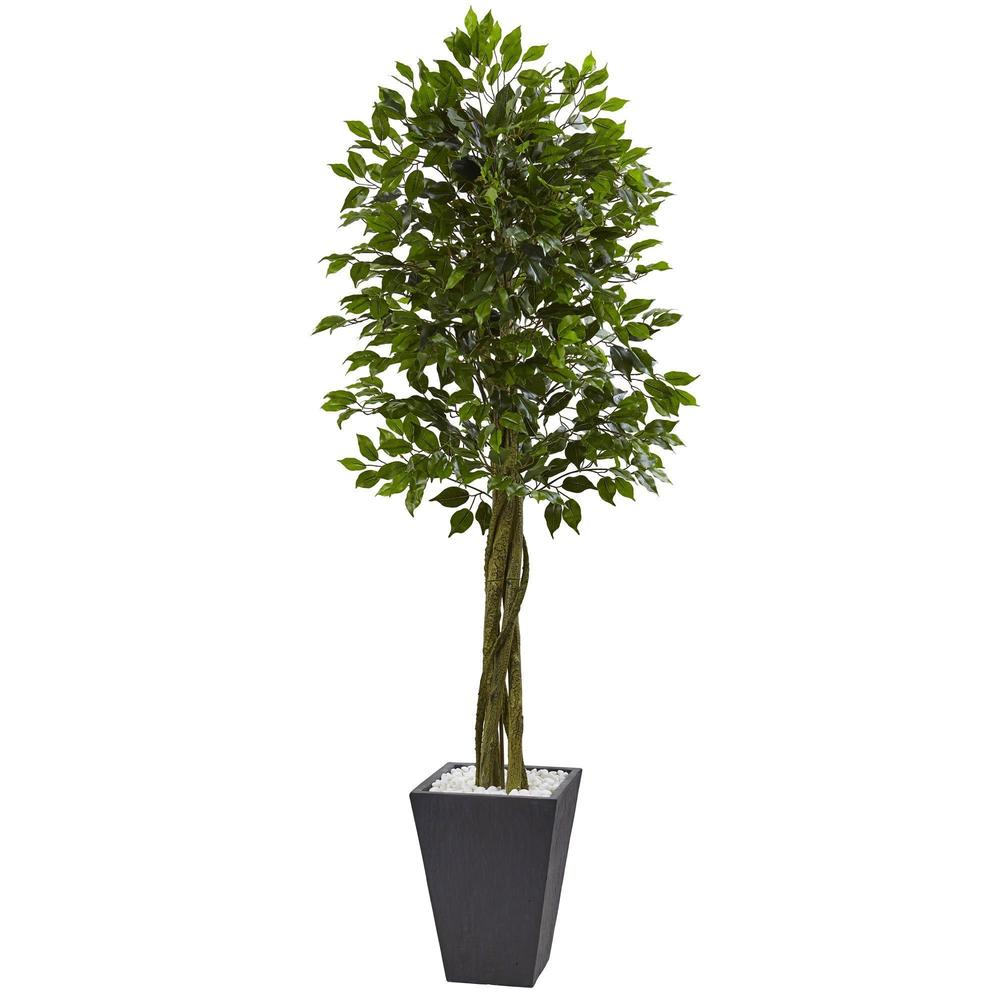 6.5' Ficus Tree with Slate Planter UV Resistant (Indoor Outdoor)