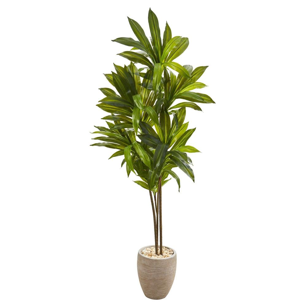 "68"" Dracaena Plant in Sand Colored Planter"