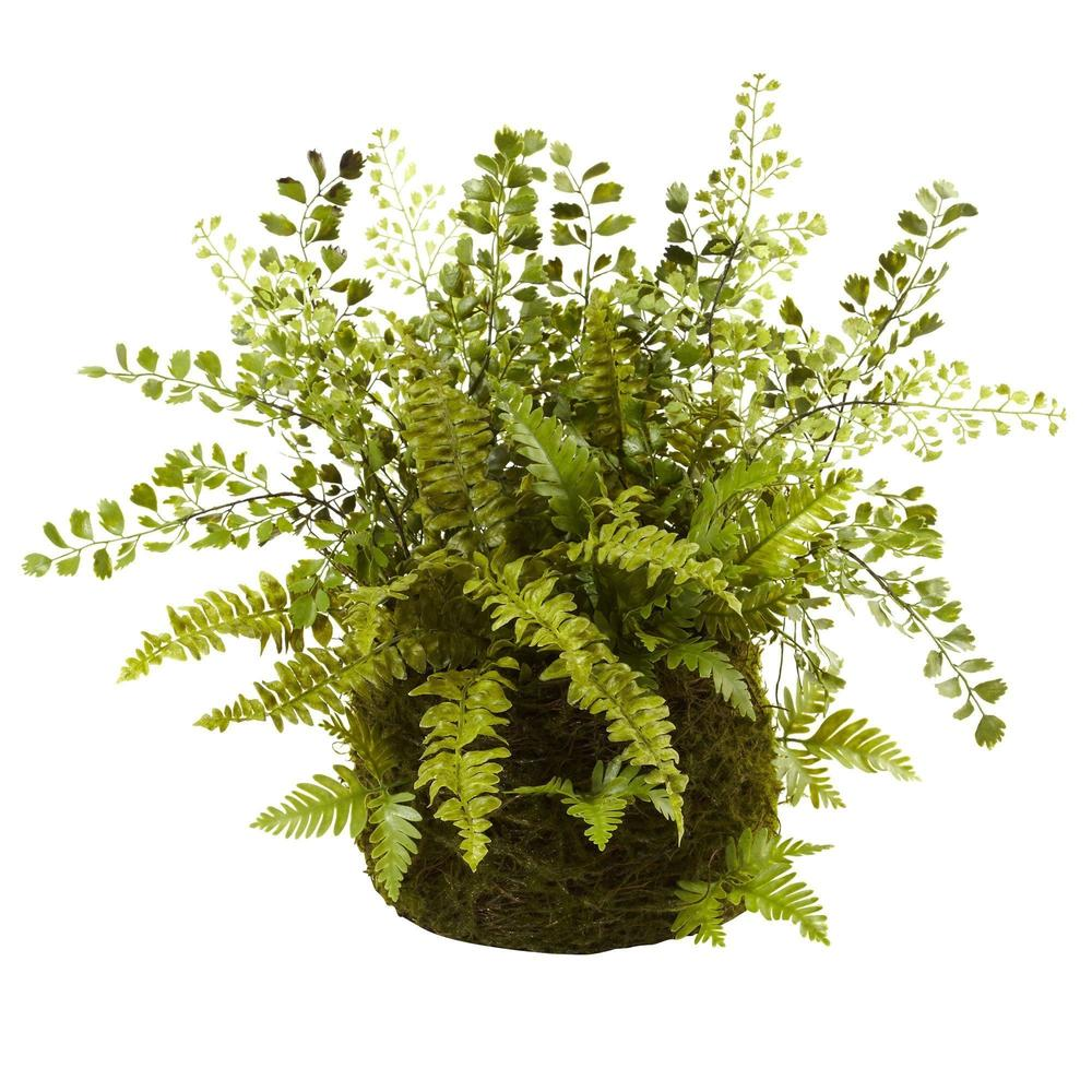 Mixed Fern w/ Twig and Moss Basket