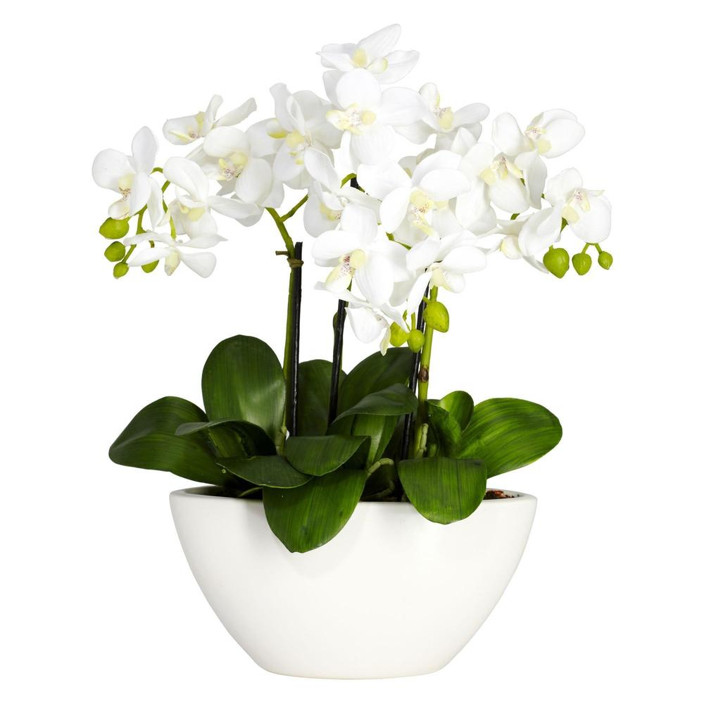 Phalaenopsis Silk Flower Arrangement