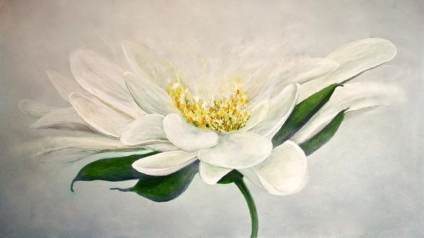 White Flower - Art Print - Jenny Bagwill Art