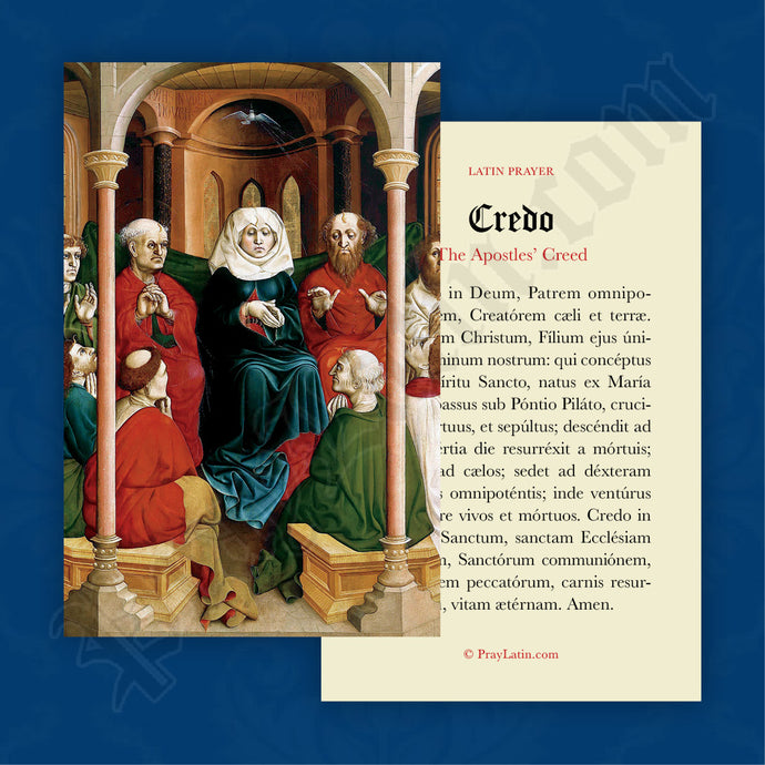 The Apostles' Creed Prayer Card in Latin