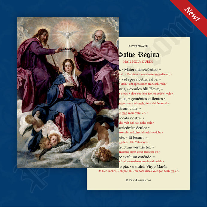Salve Regina Prayer Card with Pronunciation Guides