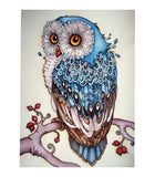 DIY 5D Diamond Painting, Owl, Diamond Embroidery Pictures Arts Craft For Home Wall Decoration - Raylinedo