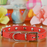 Durable PU Leather Pet Dog Cat Collar Fashion Necklace With Lovely Sunflower And Adjustable Buckle - Raylinedo