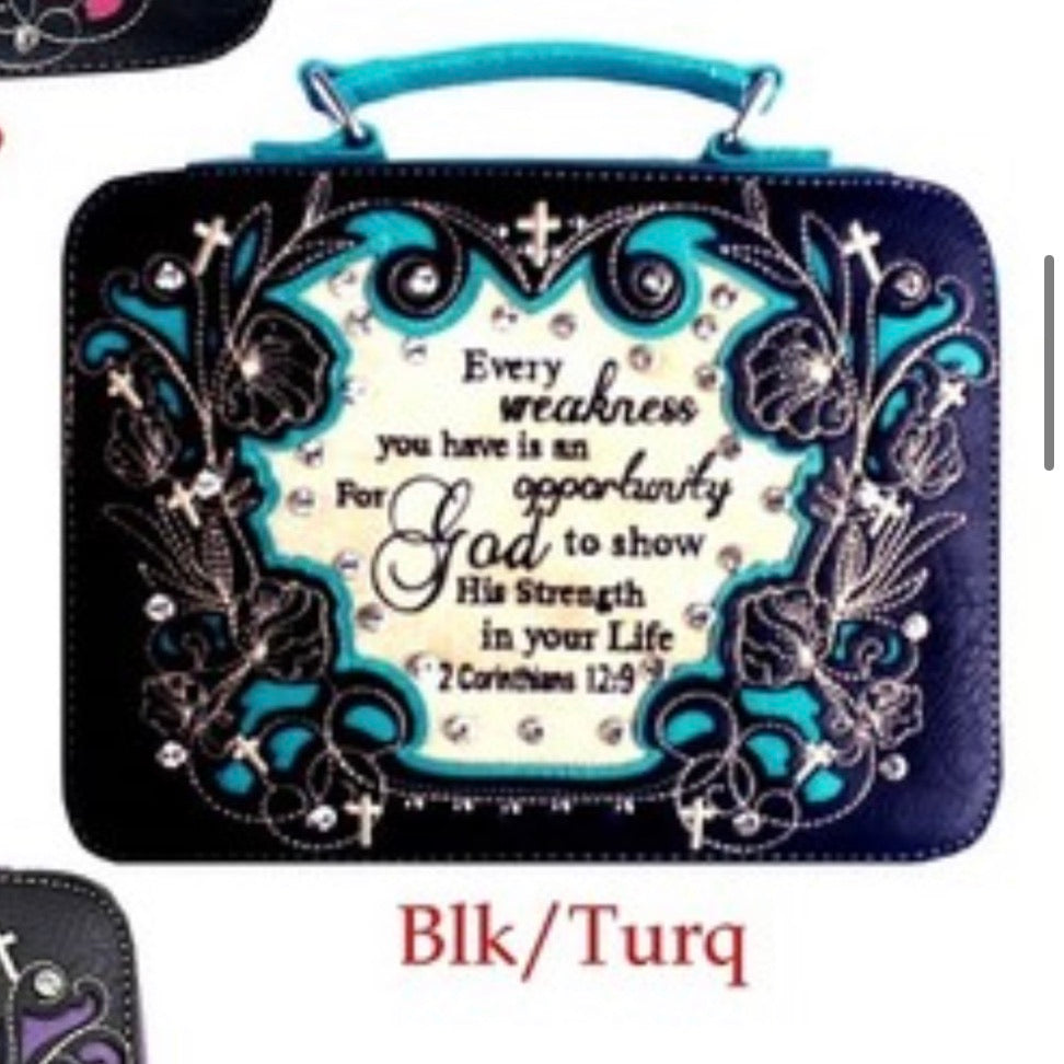 BK/TQ Every weakness bible cover