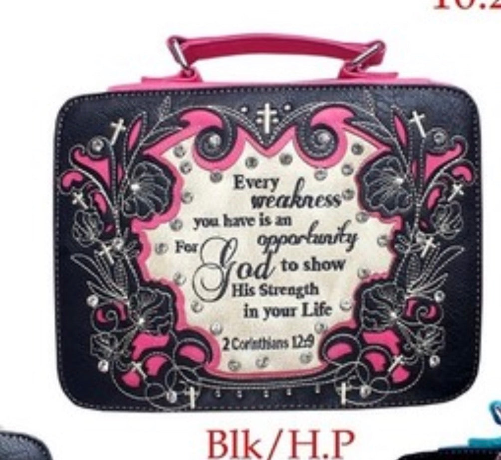 BK/HP Every weakness bible cover