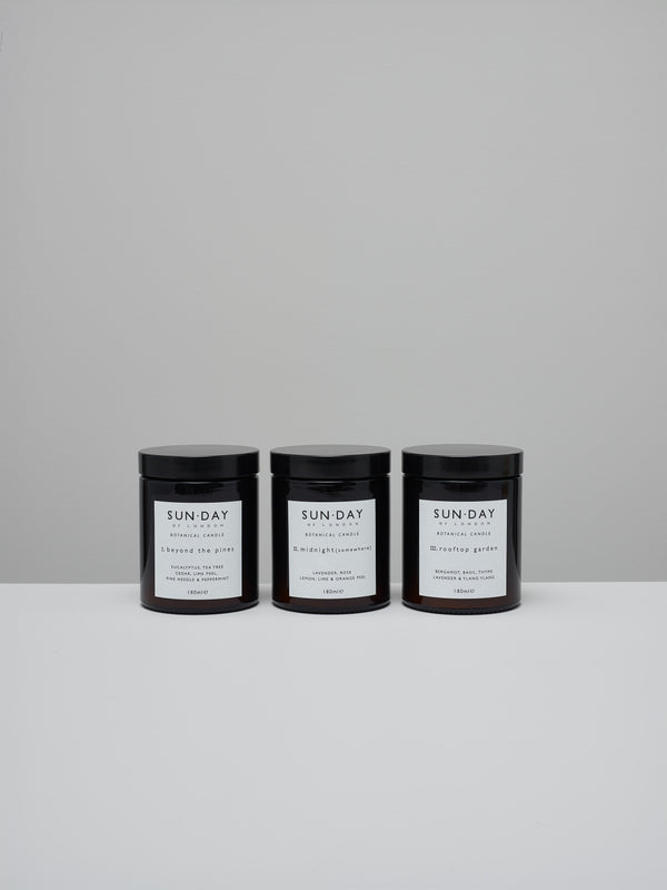 Botanical candle ~ midnight (somewhere)
