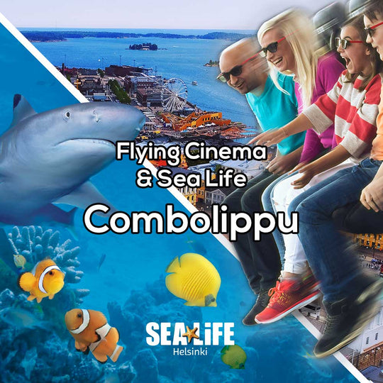 Flying Cinema Tour & Sea Life Helsinki, combo ticket