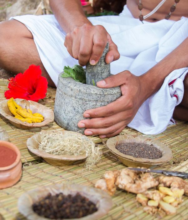 Ayurvedic Herbal Therapy