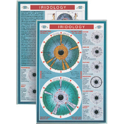 Iridology Mini Chart