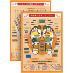 Reflexology Mini Chart