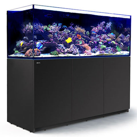 Aquariums & Supplies