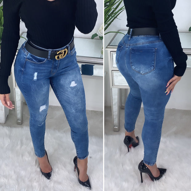 Noelle High Rise Skinny Jeans (Medium Denim)