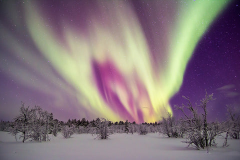 Northern Light Dance