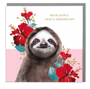 Hello Lovely Sloth Card