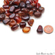3.53oz Lot Multi Agate Tumbled Reiki Healing Metaphysical Beach Spiritual Gemstone - GemMartUSA