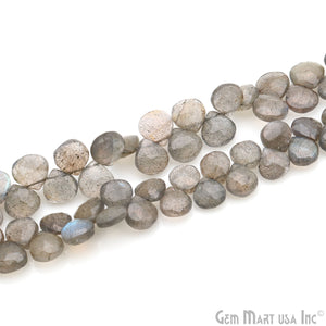 "Labradorite 7-8mm Blue Flash Faceted Onion Beads Strands 8.50"" Inch"